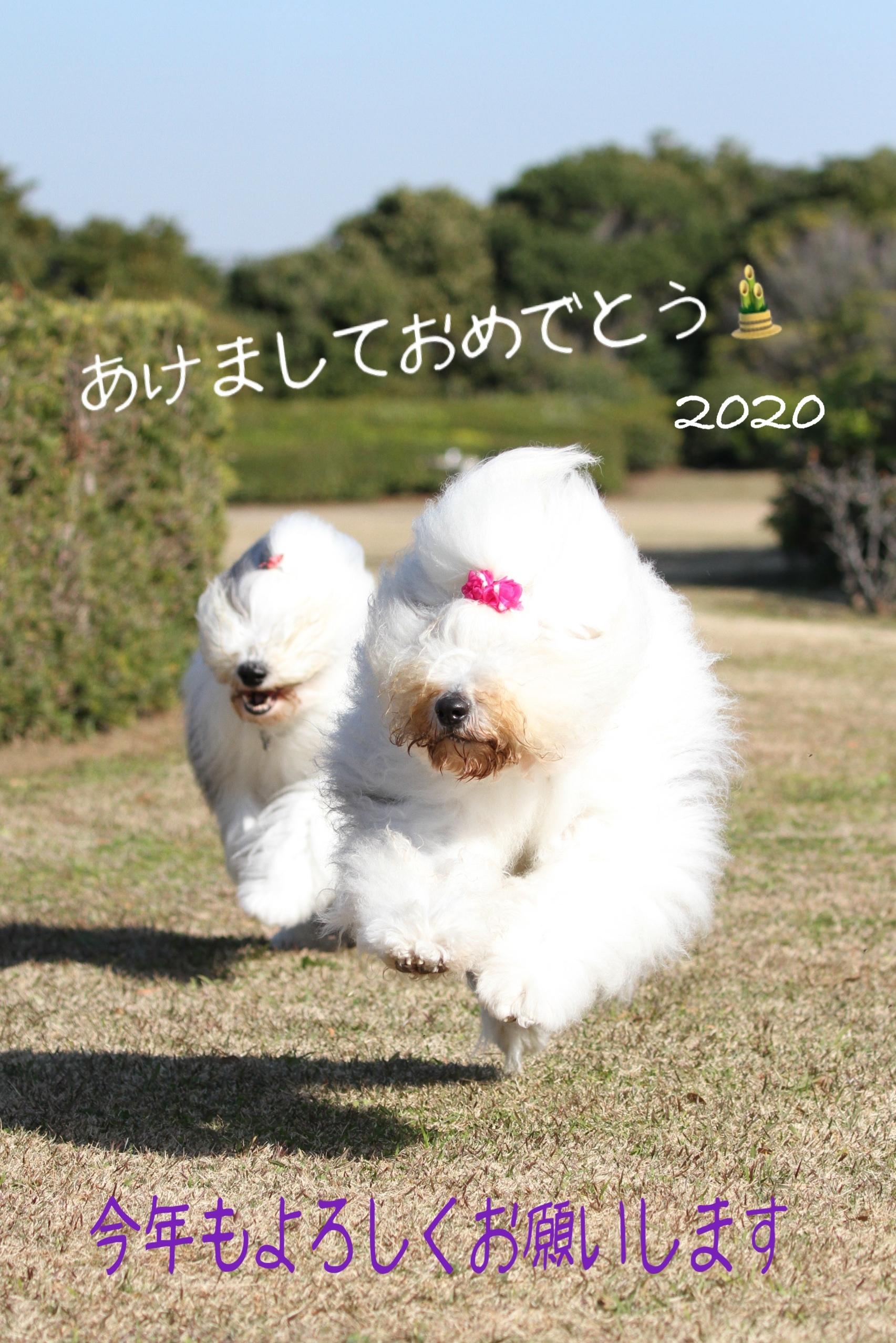 2020010207574303e.jpeg