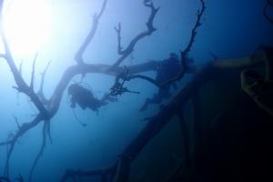 本栖湖ダイビング (2)