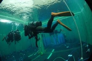 ダイビングプールで浮力チェック (2)
