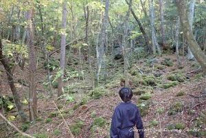 4富士山散策本栖湖ダイビング印西市おすすめ (2)