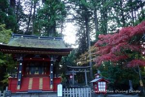 6本栖湖ダイビング浅間神社,白井市レジャー (11)