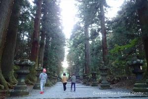 6本栖湖ダイビング浅間神社,白井市レジャー (2)