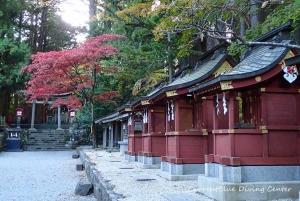 6本栖湖ダイビング浅間神社,白井市レジャー (10)