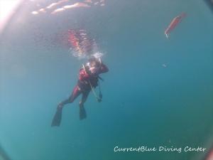 1ダイビング潜降