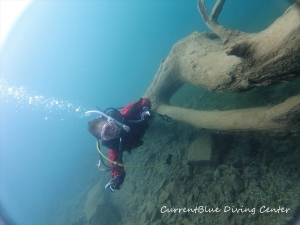 4本栖湖ダイビングツアーおすすめ世界遺産ダイビング (3)