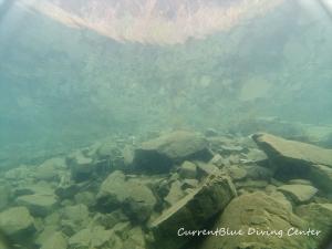 5水中から見上げる風景ダイバー目線 (2)