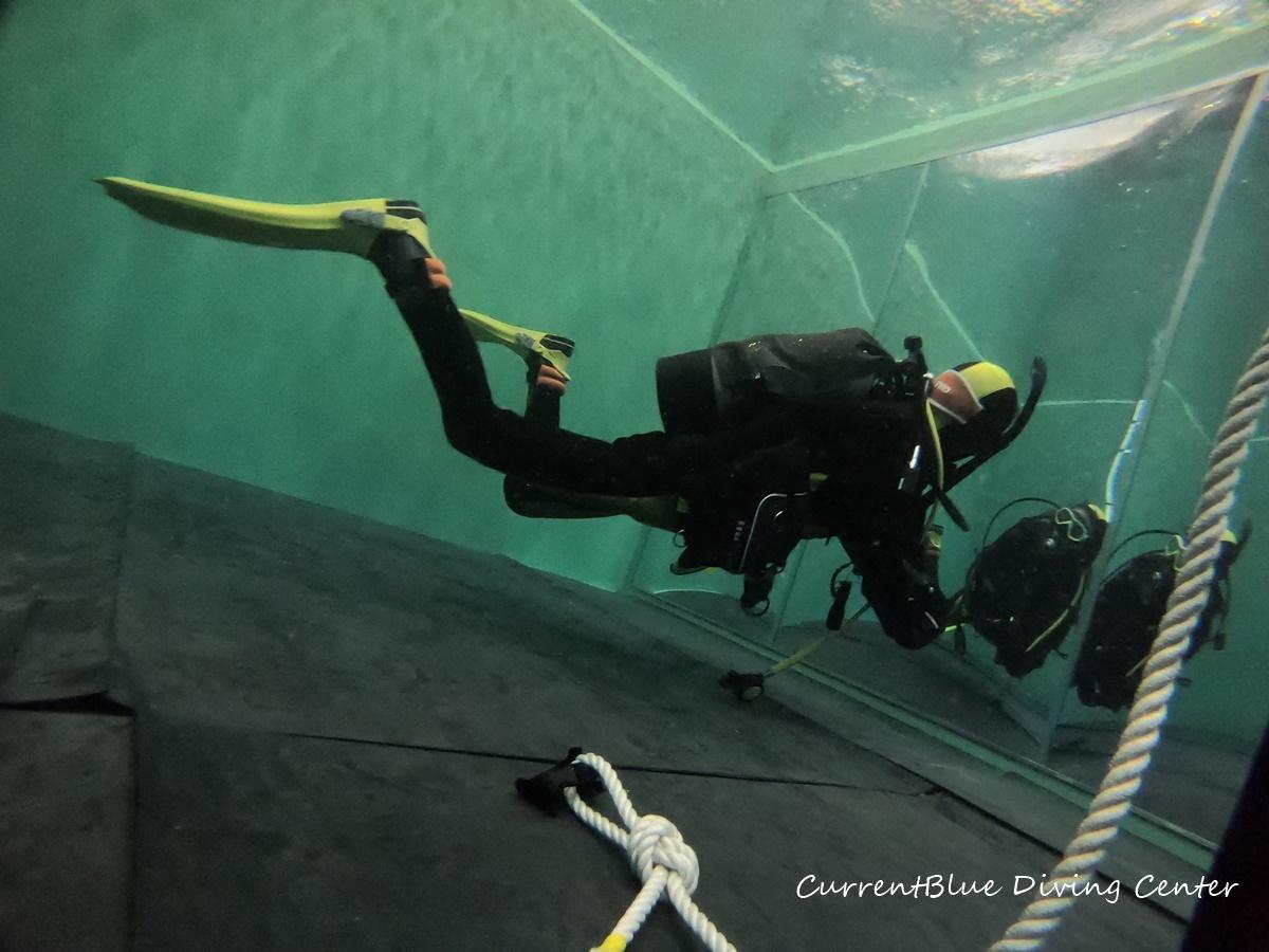 ダイビングスキルアップ・プログラム,ダイビングプール完備 (2)