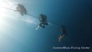 還暦記念ダイブ,雲見ダイビング,印西ダイビング,鎌ヶ谷ダイビング (1)