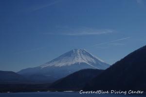 冬本栖湖ダイビング (4)