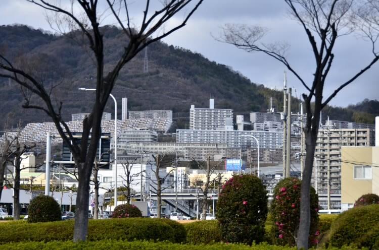 200115huyunohi01.jpg