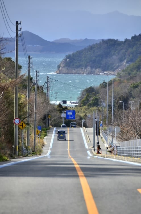 200217sakujiro031.jpg