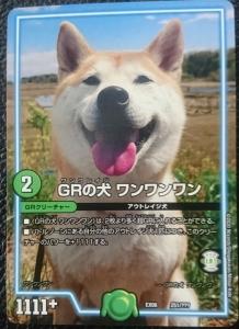 GRの犬ワンワンワン