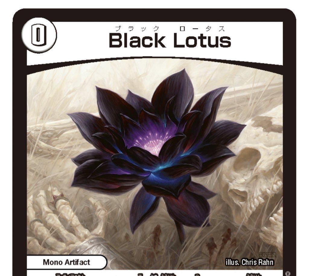 謎 の ブラック ボックス