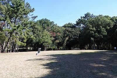 Nov-DSC_2449.jpg