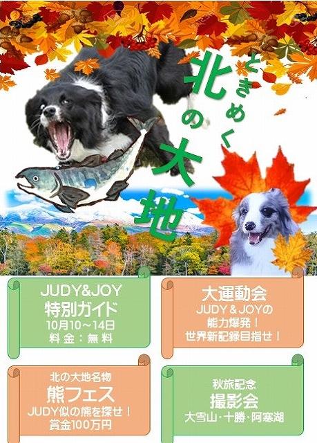 oct-aki.jpg