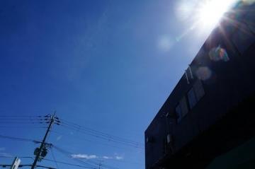 DSC03387-1.jpg