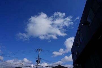 DSC04800-1.jpg