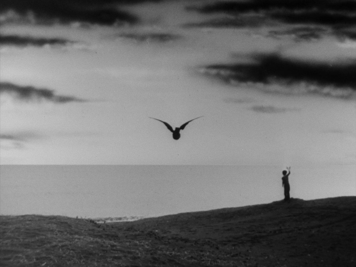 『ウルトラQ』第12話「鳥を見た」 ラスト