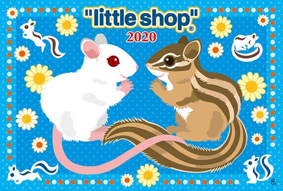 little表面2020_web