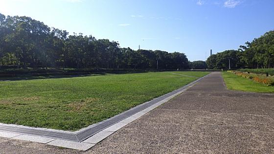 大泉緑地の中央花壇:2019年9月に撮影
