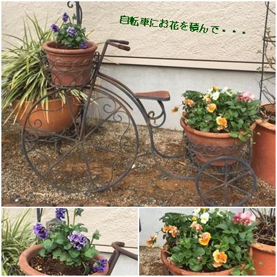 2019 11がつ 春のお花たち3