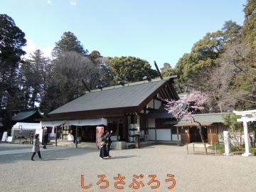 s-DSCN0270.jpg