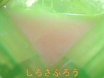 s-DSCN3046.jpg