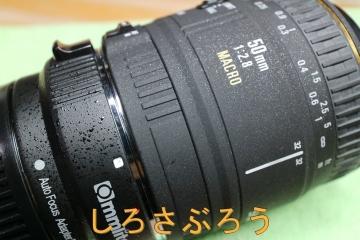 s-IMG_0231.jpg