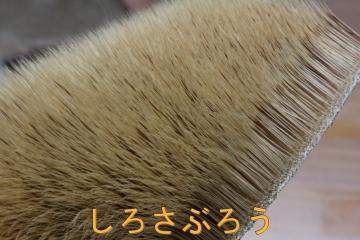 s-IMG_0623.jpg