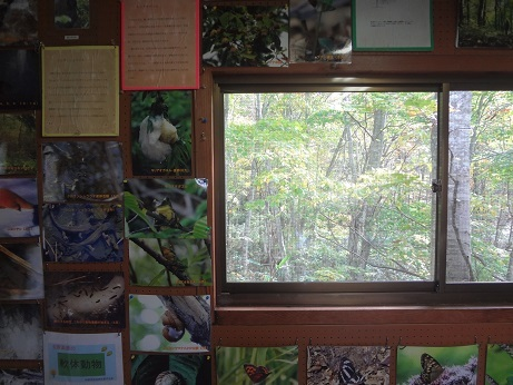 玉原自然環境センター2