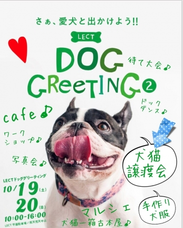19-10-01-09-13-45-985_deco.jpg