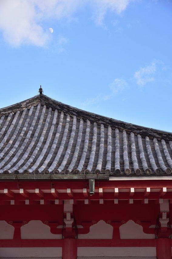 _20200105_152947_tsukanon (10)