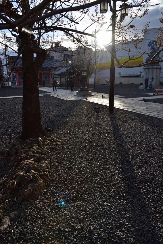 _20200105_152947_tsukanon (14)