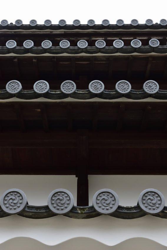 _20200112_073733_takada (50)