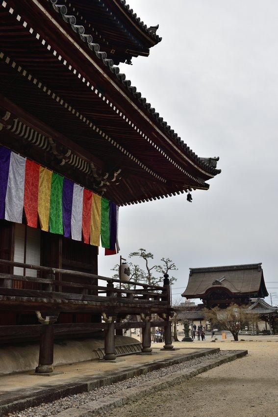 _20200112_073733_takada (68)
