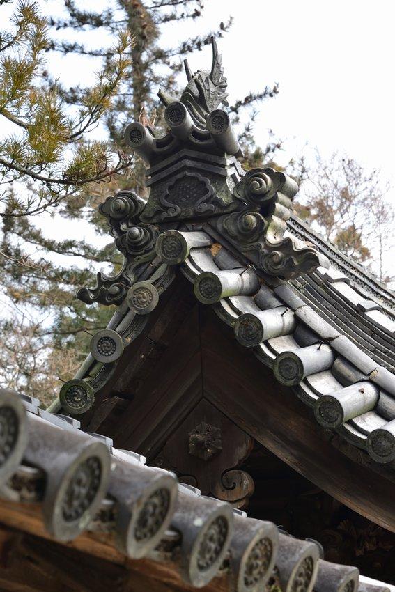 _20200122_120846_yadaji (29)