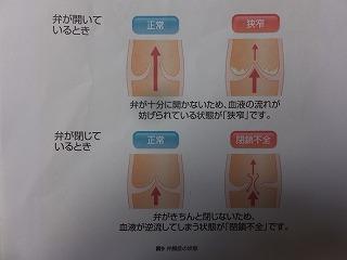 DSCF7552-12.jpg