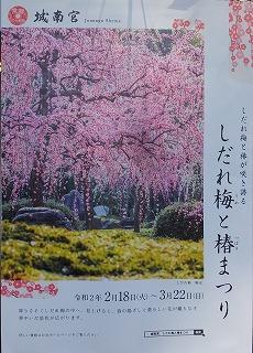 DSCF9460-12.jpg