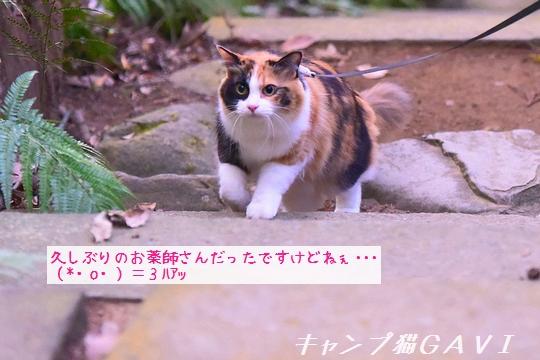 191110_1119.jpg