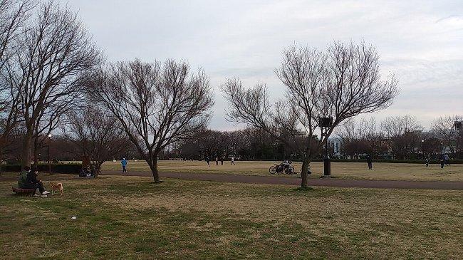 公園3月1日_p