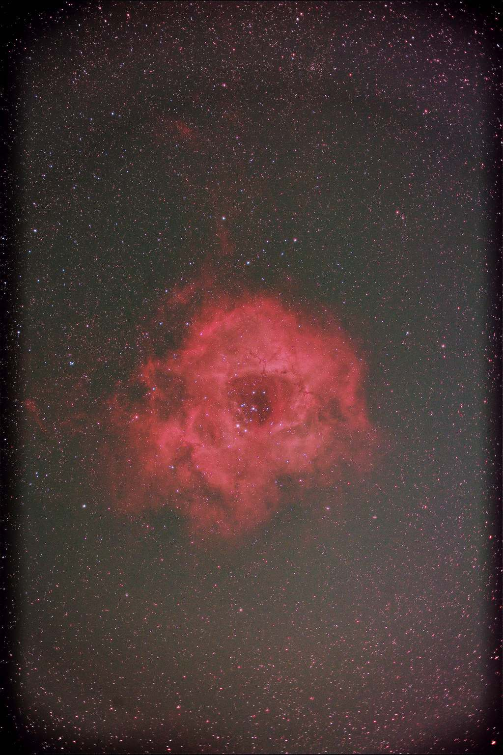 公園撮りバラ星雲2020年2月