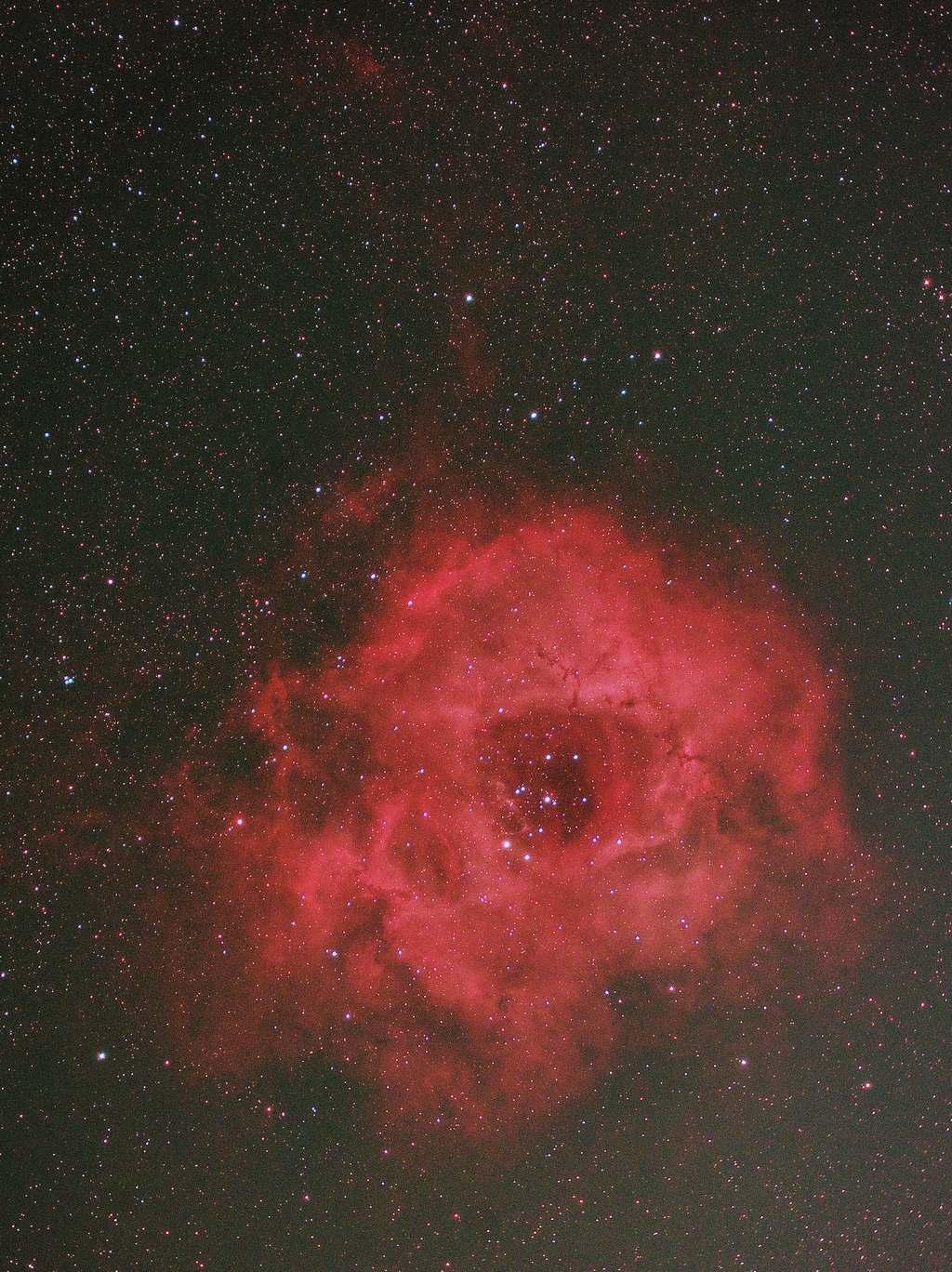 公園撮りバラ星雲2020年2月トリミング