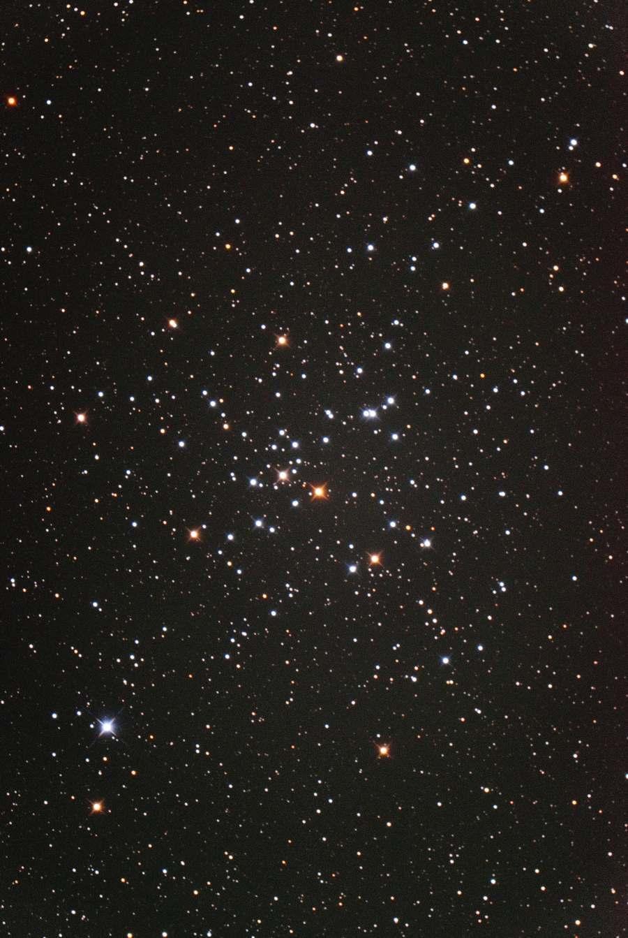 M41 2020年2月 リチャード