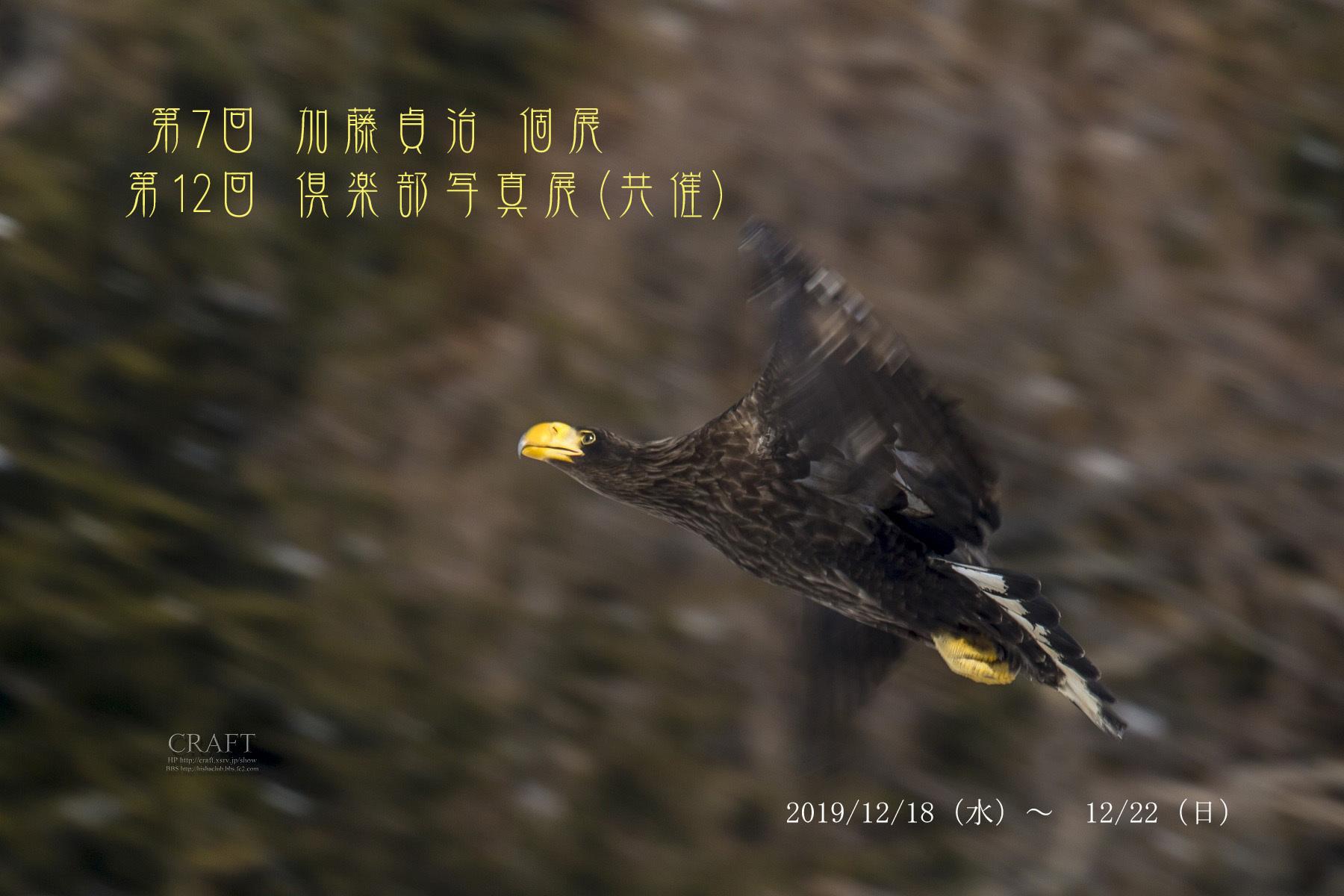 2019 12月 翔 写真展