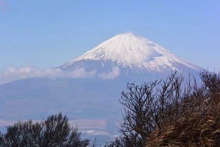 富士山金時191212