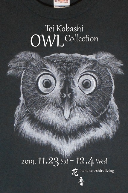 OWL Collection 2019
