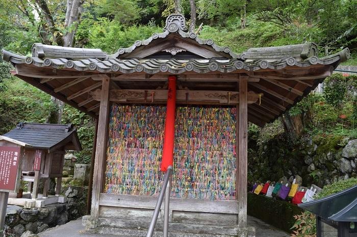 DSC_0050201909京都