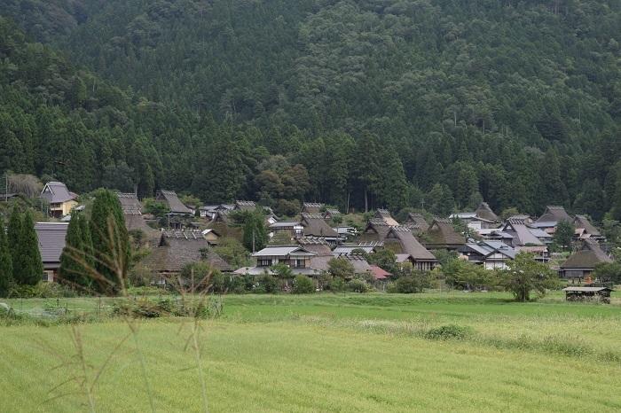 DSC_008420001910美山