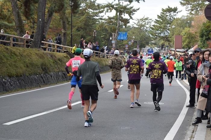 DSC_0007201912奈良