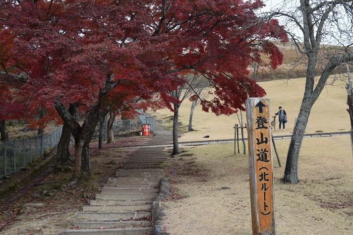 DSC_0031201912奈良